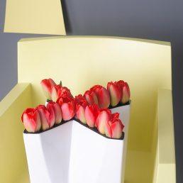 mooiwatbloemendoen-losse-bloemen-de-tulp-interieur-rode-tulpen-tulipa