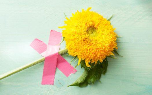 zonnebloem-beeld-mooiwatbloemendoen-geel-bloem-teddy-welke-bloemen-staan-voor-geluk--zonnebloem