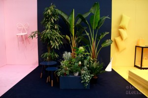 lossebloemen.nl showup2018 haarlemmermeer trade show for home and gift vijfhuizen trends 2018 bloemen losse bloemenblog trends