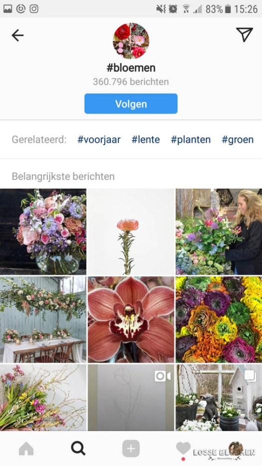 uitleg Instagram reposten Lossebloemen.nl blog bloemen - losse bloemen social media instagram grammiemagazine instagram uitleg