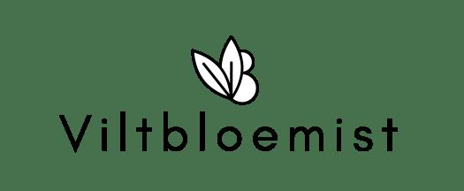 t - Daphne Engelke lossebloemen blog bloemen van vilt!