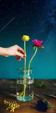 flower Constellation houseofthol lossebloemen blog bloemen vaas