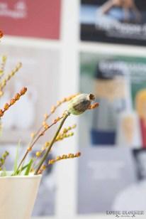 Deens the pepper bird - expressions Showup 2018 Najaar - foto's - lossebloemen-63
