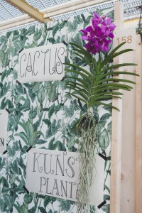 Plantengroothandel Showup 2019 trends op home and gift beurs blog