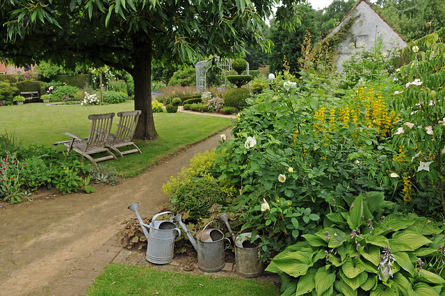 Verwonderend Schaduwplanten maken je tuin groen én regenbestendig - Losseplanten IP-39