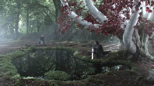 bosque de dioses
