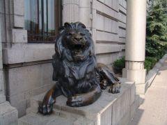 Löwe am Bund