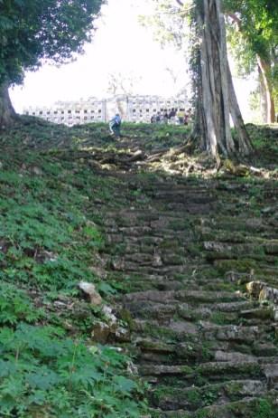 Treppe zum Edificio 33
