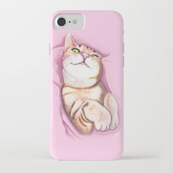 sweet-kitty110856-cases