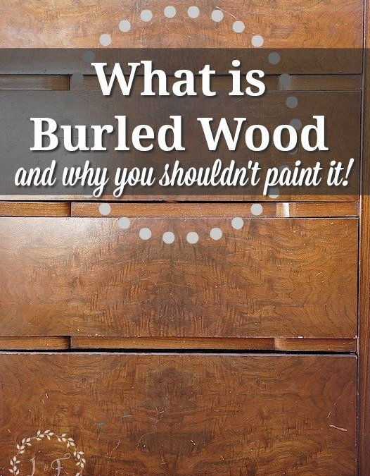 What is Burled Wood and Why You Shouldn't Paint It