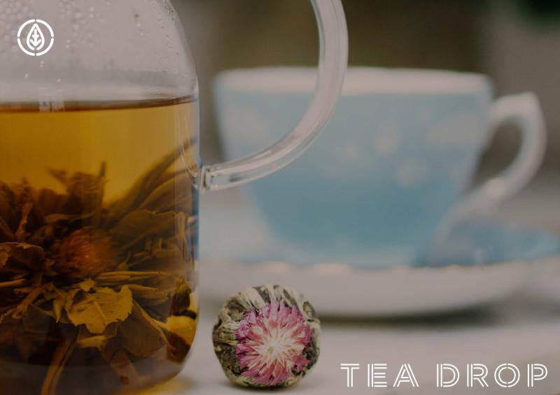 Teadrop Brochure