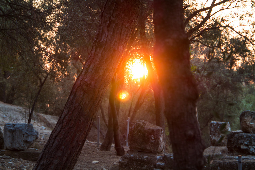 Photo of the sun setting through trees on Filopappos Hill while lost in Athens, Greece.