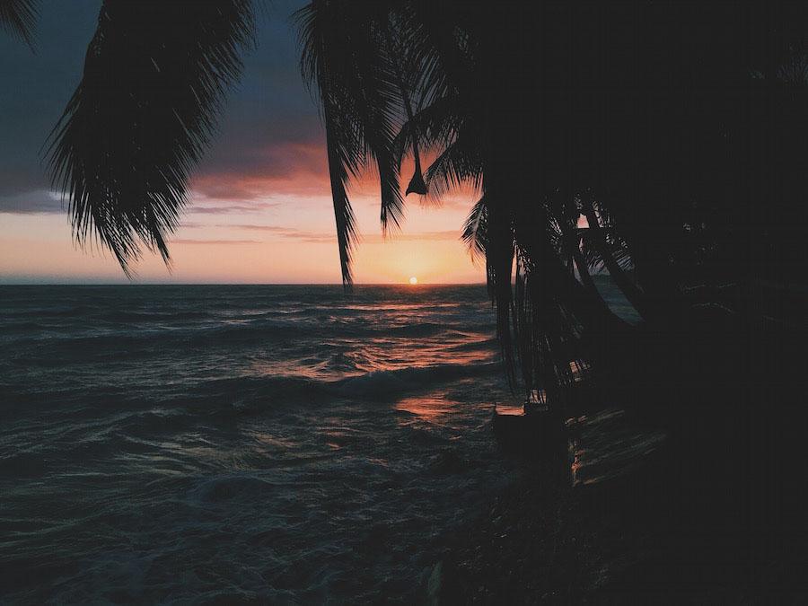 Palm tree silhouettes over the Caribbean as the sun sets near Jacmel Haiti.
