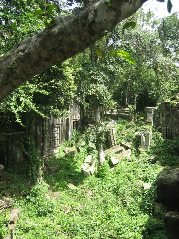 The temples slowly sink back into the jungle.