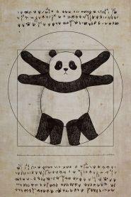Panda - 7