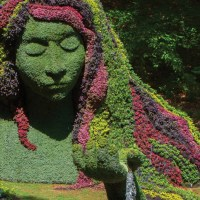 Plant Giants at the Atlanta Botanical Garden