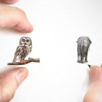 "This ""Miniature Art"" Is Unbelievably Exquisite"