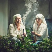 "A Couple of ""Nuns"" Grow and Harvest Medical Marijuana"