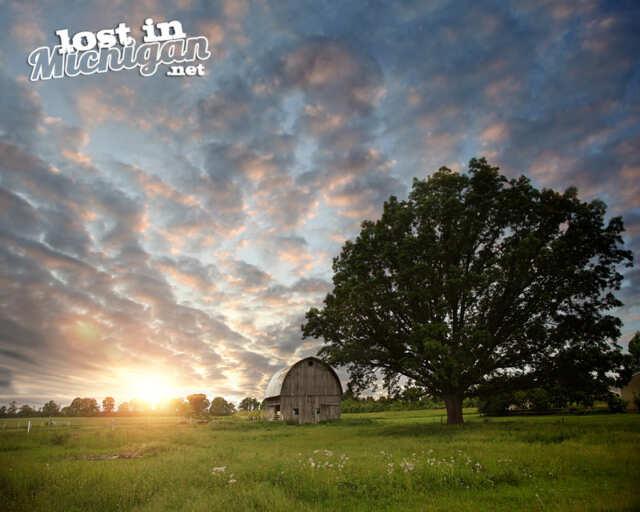 rosebush Michigan Barn