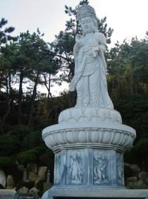 South korea 231 (2)
