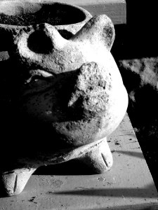 Stone Pig