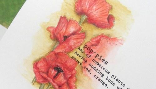 Poppies - Detail