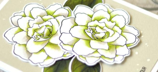 Altenew - Wispy Begonia - Therese Calvird (Take 2 card video) 1 copy