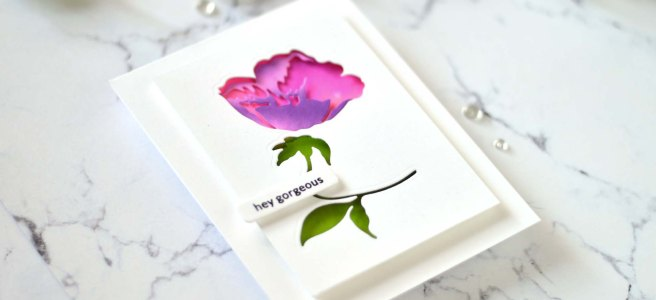 Lostinpaper - Altenew - CAF Buttercup - Delicate Flower Bed - Featured Sentiments Die (card video) 2