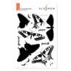 Dovetail Butterflies