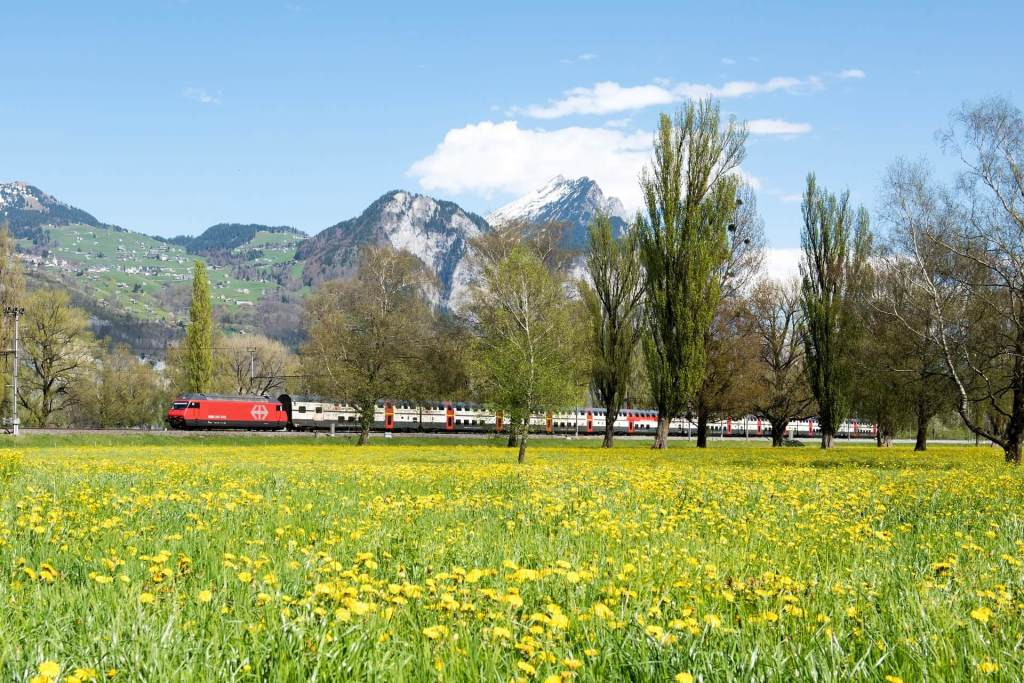 Switzerland has one of the densest railway networks in the world