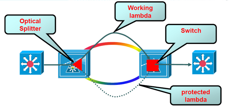 CCDE optical splitter protection mode
