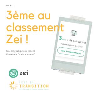 Classement Zei RSE