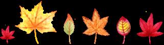 autumn kansas city bucket list