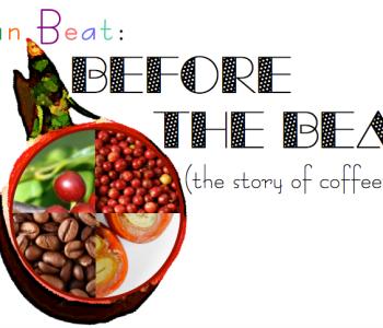 coffeefruit, coffee fruit, coffee berry