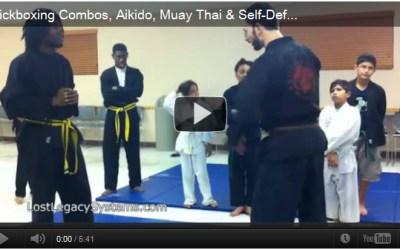 Kickboxing Combos, Aikido, Muay Thai & Self-Defense