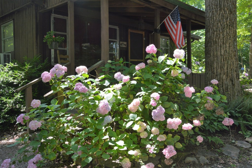 If you're searching for cabin rentals at beautiful Lake Cumberland, look no further than the Lost Lodge Resort.