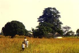 1982_DB07