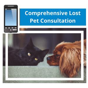 Comprehensive Consultation