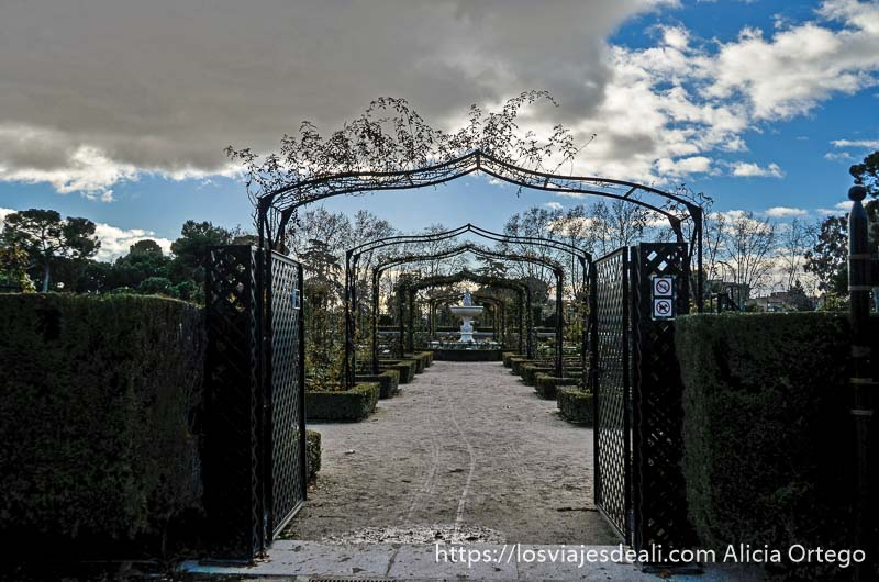 túnel de arcos de hierro con enredaderas y cielo nublado en la rosaleda del retiro de madrid