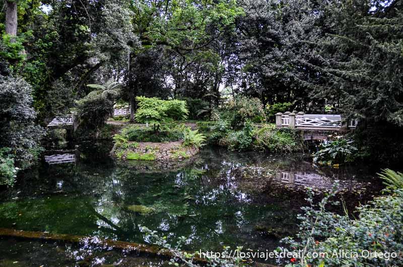 jardines con estanque y un puente blanco
