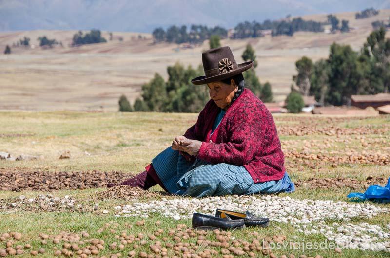 señora andina mayor sentada en la hierba secando papas