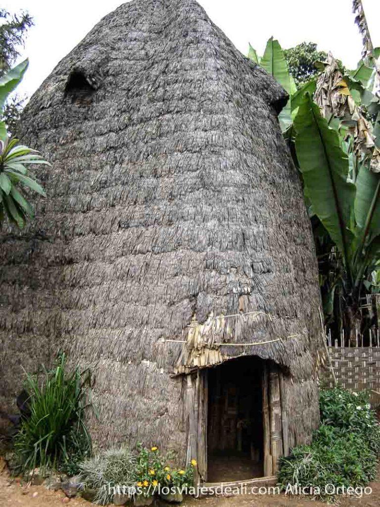 casa elefante de la tribu dorze en etiopía