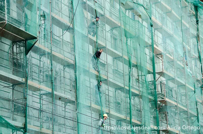 fachada llena de andamios con redes verdes y una fila de obreros asomando la cabeza