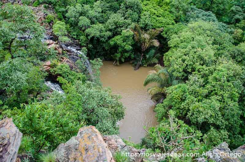vista de las cascadas desde arriba con bosque muy tupido alrededor en benin