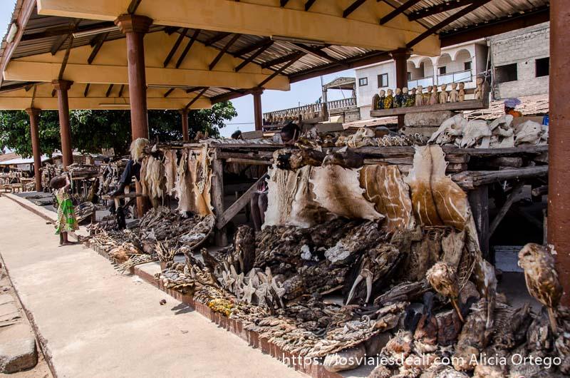 puestos llenos de pieles y animales disecados en el mercado de fetiches de la capital de togo