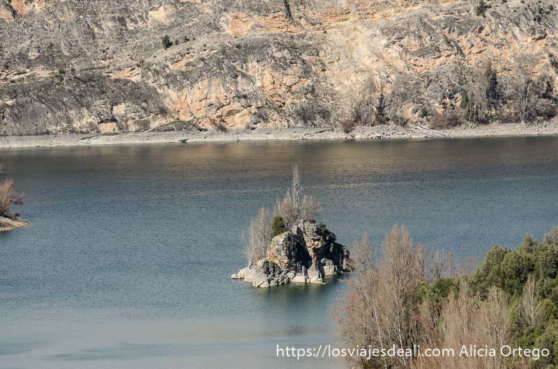 islote en el agua del río con un pequeño árbol hoces del duratón