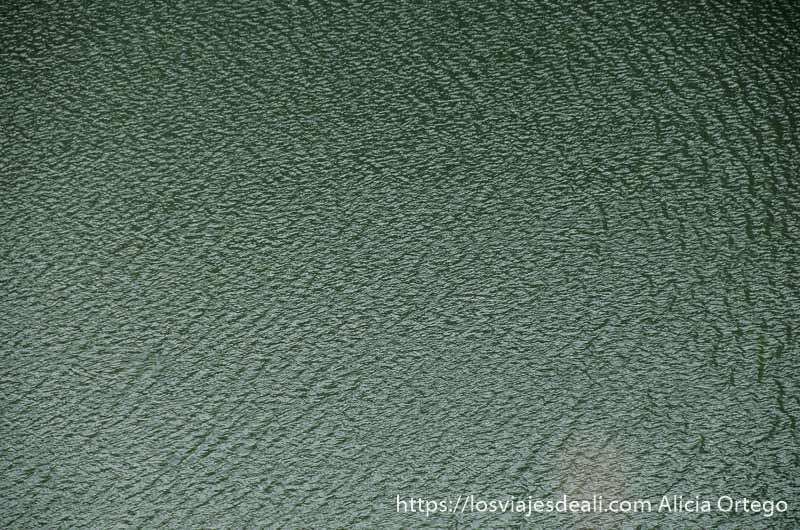 agua de color verde del río en hoces del duratón