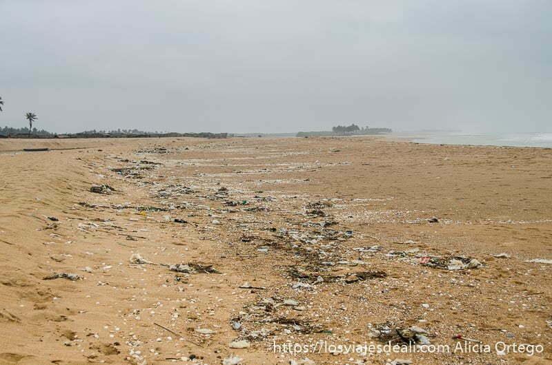 playa de benin llena de basura resumen 2019