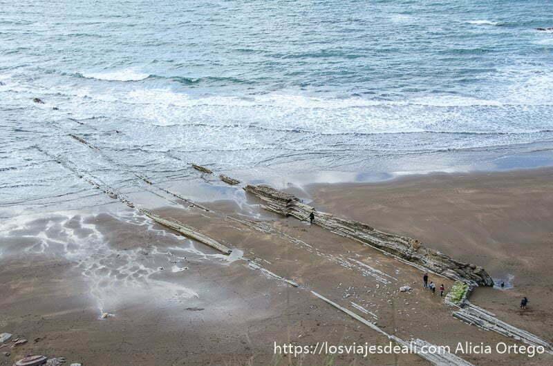 dos rasas finas entrando en el mar en la playa de zumaia