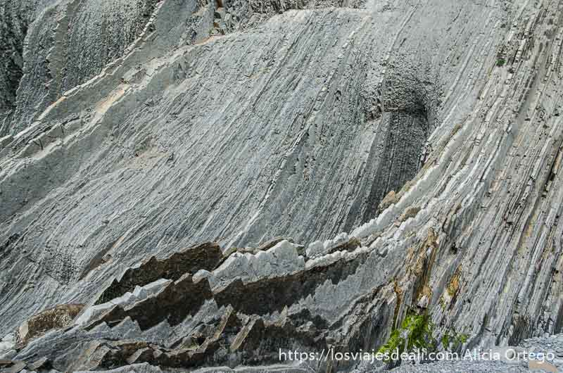 roca en capas haciendo curvas en los acantilados del flysch de zumaia